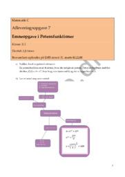 Emneopgave i Potensfunktioner | Matematik C