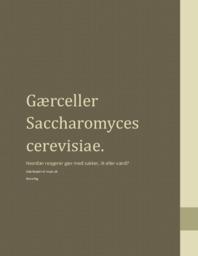 Gærceller | Saccharomyces cerevisiae | Biologi Rapport