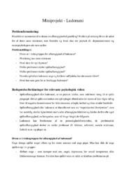 Ludomani – Miniprojekt | Psykologi