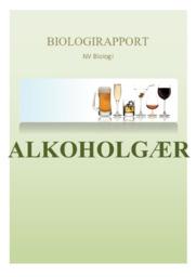 Biologirapport | Alkoholgær