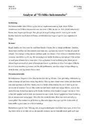 Et bliks hukommelse | Jakob Wilms | Analyse