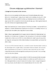Citroens målgruppe og bilbranchen i Danmark | Opgave