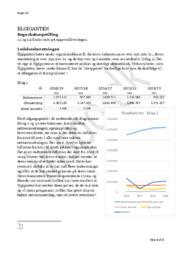 Elgiganten | Rengskabsopstilling & Ledelsesberetningen | Virksomhedsøkonomi Opgave