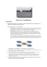 Case 12.3: Vandflyrute | Afsætning