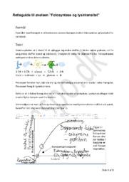 Fotosyntese og lysintensitet | Retteguide til øvelsen