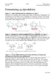 Fermentering og Ølproduktion | Bioteknologi Eksamensopgave