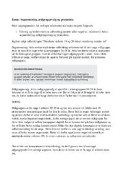Segmentering, målgruppevalg og promotion | Afsætning