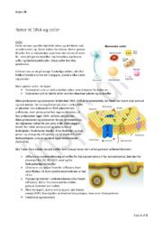 DNA & Celler Noter | Bioteknologi