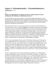 Virksomhedsanalyse | Spørgsmål 1.1 – 1.7