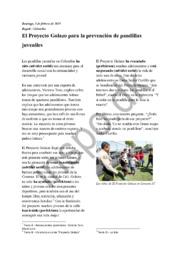 El Proyecto Golazo para la prevención de pandillas juveniles