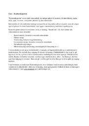 Informatik C Case Kontoreksperten