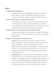Fordybelsesopgave Segmentering af målgruppe