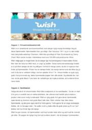 Virksomhedsanalyse af Wish | 10 i karakter