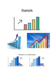 Statistik | Mat noter | 10 i karakter