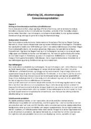 Afsætning | eksamensopgave | 12 i karakter