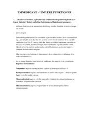Emneopgave   Lineære Funktioner   10 i karakter
