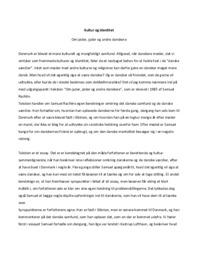Kultur og identitet | Dansk Opgave | 10 i Karakter