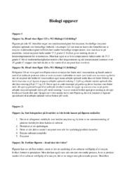 Giftige edderkopper   Biologi opgave   10 i karakter