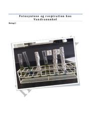 Fotosyntese og respiration hos Vandranunkel | Biologi rapport