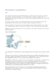 Betalingsbalance og Kapitalbalance | IØ Opgave | Noter