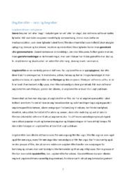 Ungdomsfilm teori og begreber | 7 siders noter