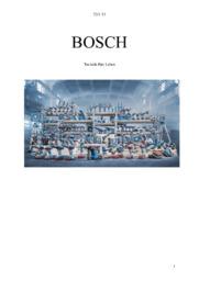 Projekt Bosch | Tysk | 10 i karakter