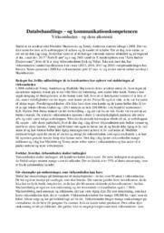 Sinful   Virksomhedsanalyse   10 i karakter