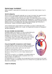 Hjerte-lunge Kredsløbet | 10 i karakter