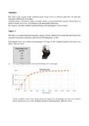 Smykker | Matematik årsprøve