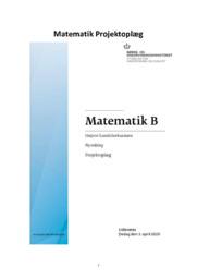 Matematik B | HHX eksamen | 12 i karakter