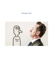 Normal AS | Virksomhedsanalyse | 10 i karakter