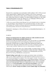 Hummel AS | VØ opgave | 12 i karakter