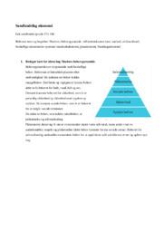 Veldfærdstrekanten | Maslows behovspyramide