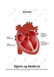 Hjerte og blodtryk | Biologi noter