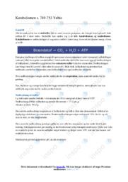 Katabolismen   Biologi noter