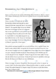 'Jeg er Zlatan Ibrahimovic'   Romananalyse   10 i karakter
