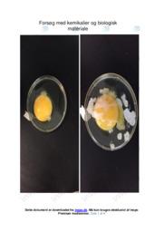 Kemikalier og biologisk materiale | Forsøg | 12 i karakter