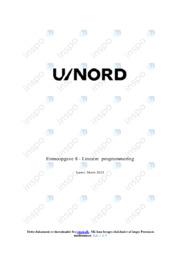 Lineær programmering | Emneopgave | 10 i karakter
