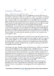 BoConcepts internationalisering | 10 i karakter