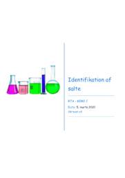Identifikation af salte | Forsøg | 10 i karakter