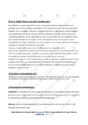 Nemlig.com – VØ opgave – 10 i karakter