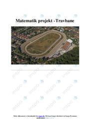 Matematikprojekt | Travbane | 10 i karakter