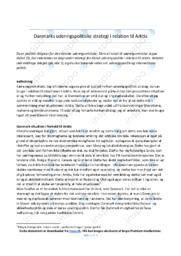 Danmarks udenrigspolitiske strategi i relation til Arktis | 10 i karakter