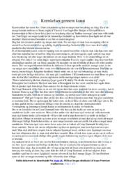 Krænkelser gennem Kunstværker   Dansk Essay   10 i Karakter
