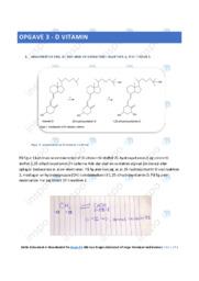 D vitamin | Bieteknologi | 10 i karakter