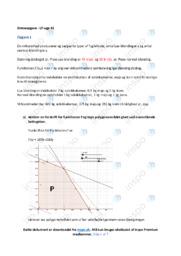 Lineær programmering | Emneopgave | 12 i karakter