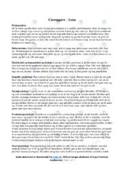 Caseopgave om Lena | Analyse | Psykologi