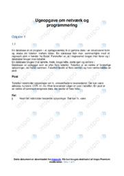 Netværk og programmering | Kommunikation og it
