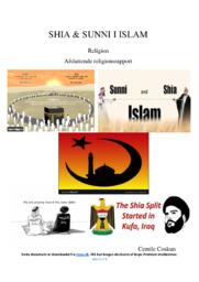 Shia og Sunni Islam | Religionsrapport | 10 i karakter