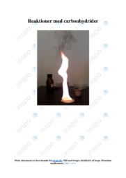 Reaktioner med carbonhydrider | Kemirapport | 10 i karakter